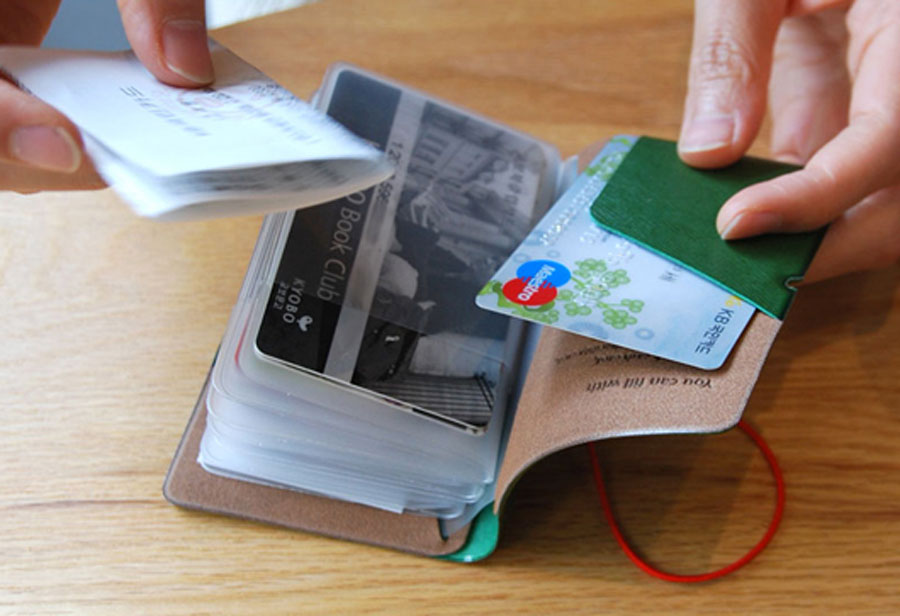 Plepic Extra Card Book 30 Slots Credit Card Case